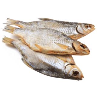Вобла вяленая Астраханская דג מיובש וממולח