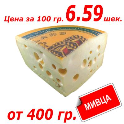 Сыр Масдам גבינה מסדם