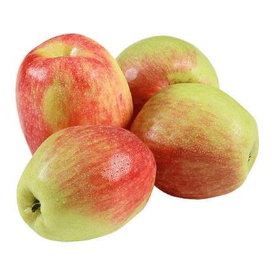 Яблоко сезонное תפוח עץ עונה